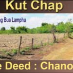 Grosses Baugrundstück in Udon Thani - Kutchap zu verkaufen