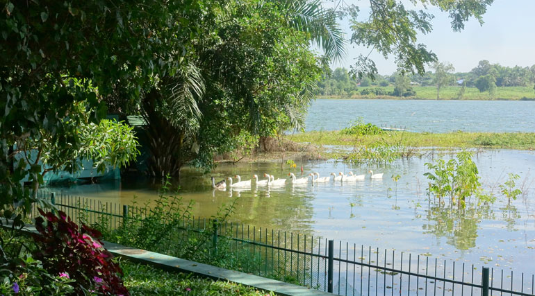 Pattaya Poolvilla mit Seeblick und eigenem Seeufer 17